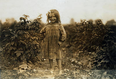 Photograph - Laura Petty A 6 Year Old Berry Picker On Jenkins Farm Rock Creek Maryland 1909 by Lewis Hine Presented by Joy of Life Art