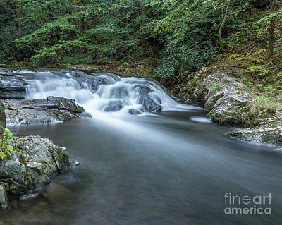 Photograph - Laural Creek Cascade by Patrick Shupert