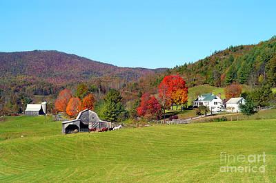 Photograph - Laura's Farm by Annlynn Ward