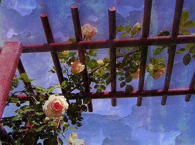 Photograph - Laura's Rose Trellis 2 by Jen White