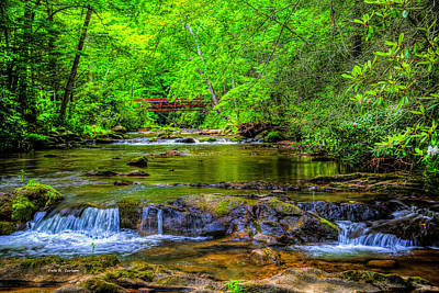 Photograph - Laurel Creek by Dale R Carlson