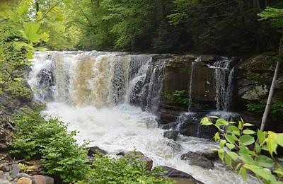 Photograph - Laurel Creek Falls - West Virginia by rd Erickson
