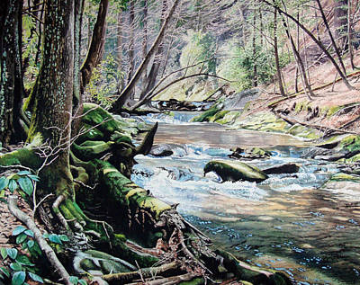 Laurel Creek  Art Print by Jennifer Oakley-Delaplante
