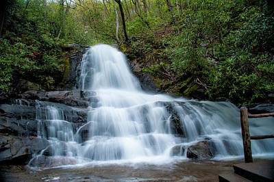Photograph - Laurel Falls by Cathie Crow