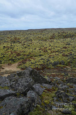 Photograph - Lava Field In Iceland With Volcanic Rocks And Moss by DejaVu Designs
