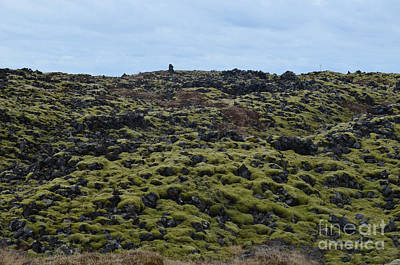 Photograph - Lava Field On The Snaefellsnes Peninsula In Iceland  by DejaVu Designs