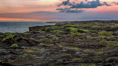 Photograph - Lava Fields At Sunset by Susan Rissi Tregoning