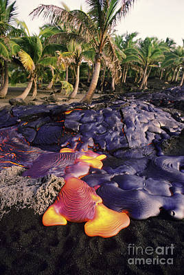 Photograph - Lava Flow And Palms by Ron Dahlquist - Printscapes