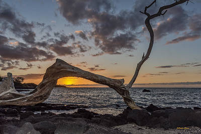 Photograph - Lava Lava Sunset by Stephen Johnson