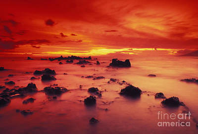 Photograph - Lava Rock Beach by Dave Fleetham - Printscapes