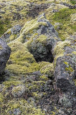 Photograph - Lava Rocks And Moss by Tom Singleton