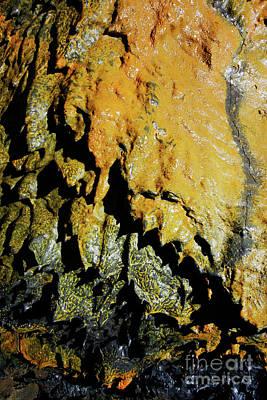 Azoren Photograph - Lava Tube Wall by Gaspar Avila