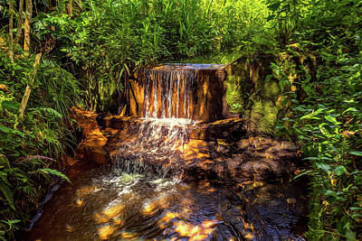 Photograph - Lavapatas Spring by Maria Coulson