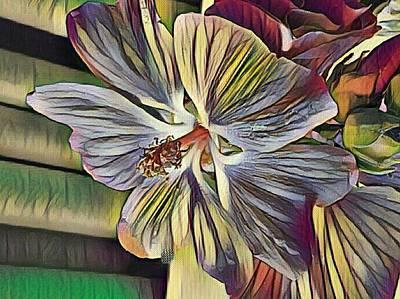 Mixed Media - Lavatera - Tree Mellow by Nancy Pauling