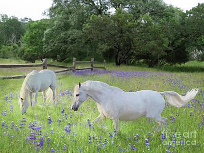 Digital Art - Lavender Pastures by Melinda Hughes-Berland
