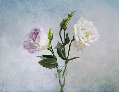 Photograph - Lavender And White Anemones Still Life by Louise Kumpf