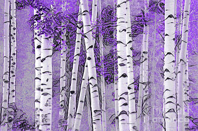 Photograph - Lavender Aspen Delight by John Stephens