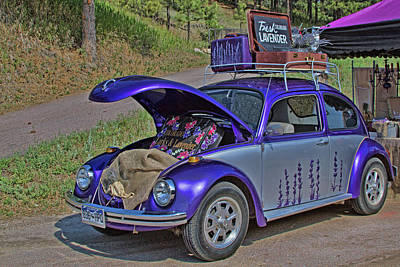 Photograph - Lavender Bug by Alana Thrower