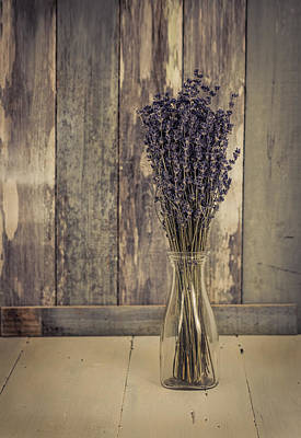Photograph - Lavender Bunch by Kim Hojnacki
