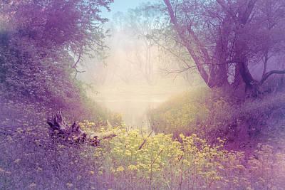 Photograph - Lavender Dreams by Debra and Dave Vanderlaan