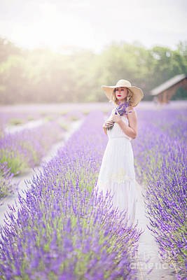 Photograph - Lavender Dreams by Evelina Kremsdorf