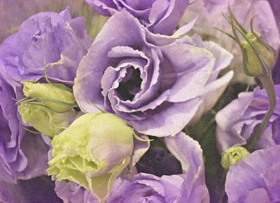 Blume Photograph - Lavender Dreams by Kathy Bucari