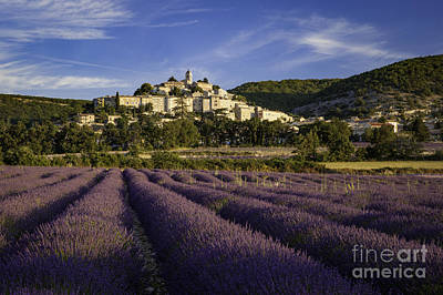 Lavender Field Below Banon Art Print by Brian Jannsen