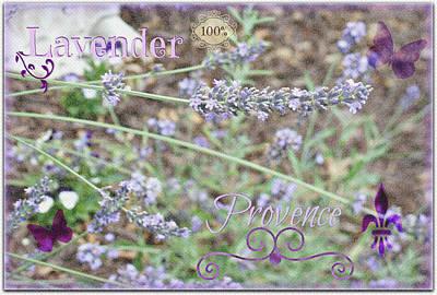 Purple Flowers Digital Art - Lavender Fields by Kathy Bucari