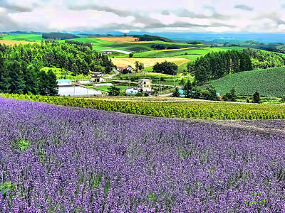 Art Print featuring the photograph Lavender Fields by Kathy Tarochione