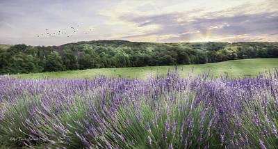 Photograph - Lavender Fields by Lori Deiter