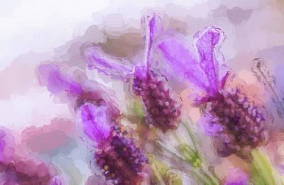 Lavender Flower Art Print by Julio Henriques