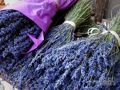 Photograph - Lavender For Sale by Lainie Wrightson