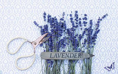 Photograph - Lavender Garden by Rebecca Cozart