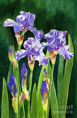 Lavender Irises And Buds With Background Art Print by Sharon Freeman