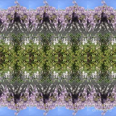 Photograph - Lavender Lilies  by Nora Boghossian