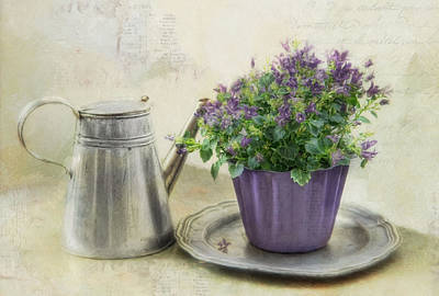 Photograph - Lavender Morning by Robin-Lee Vieira