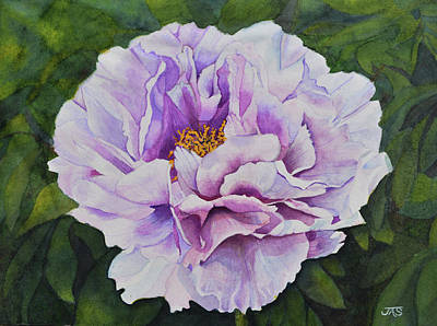 Painting - Lavender Peony by Jean Sumption