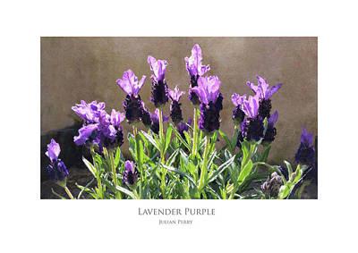Digital Art - Lavender Purple by Julian Perry