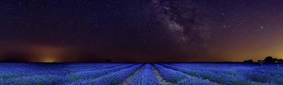 Photograph - Lavender Sky by Hernan Bua
