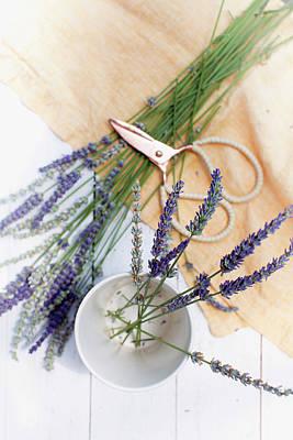 Photograph - Lavender Still Life 3 by Rebecca Cozart