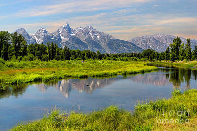 Lavender Teton Peaks  Art Print