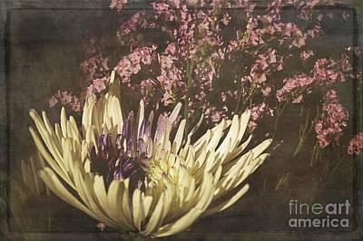 Photograph - Lavender Twilight by Teresa Wilson