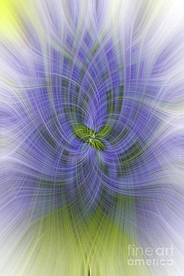 Photograph - Lavender Twirl by Elaine Teague
