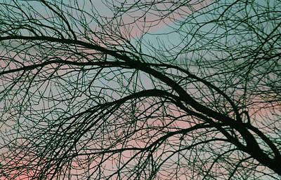 Pink Photograph - Lavish Sky by The Art Of Marilyn Ridoutt-Greene