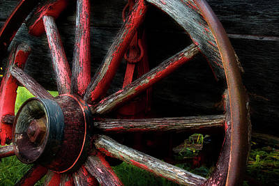 Photograph - Lawn Ornament 2 by Mike Eingle