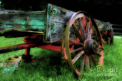 Photograph - Lawn Ornament by Michael Eingle