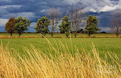 Photograph - Layered Landscape by Nareeta Martin