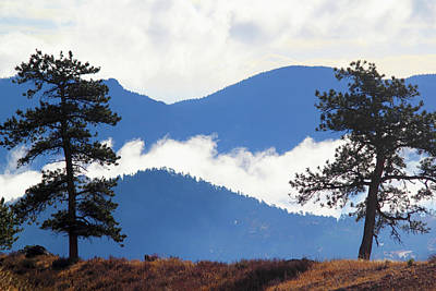 Photograph - Layers Of Nature by Shane Bechler