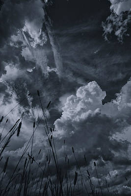 Cloudscape Photograph - Laying In The Grass by Nathan Larson