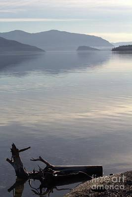 Art Print featuring the photograph Laying Still by Victor K